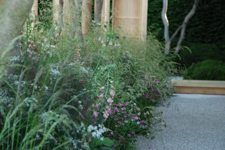 Daily Telegraph Garden planting