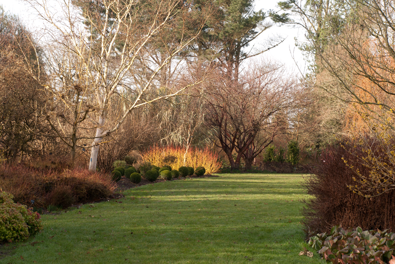 Winter Garden at Sir Harold Hillier Garden