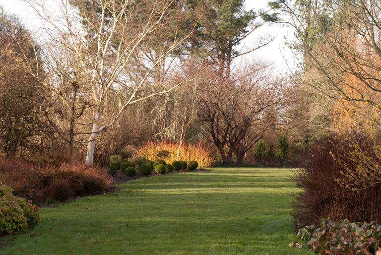 Winter Garden at Sir Harold Hillier Garden