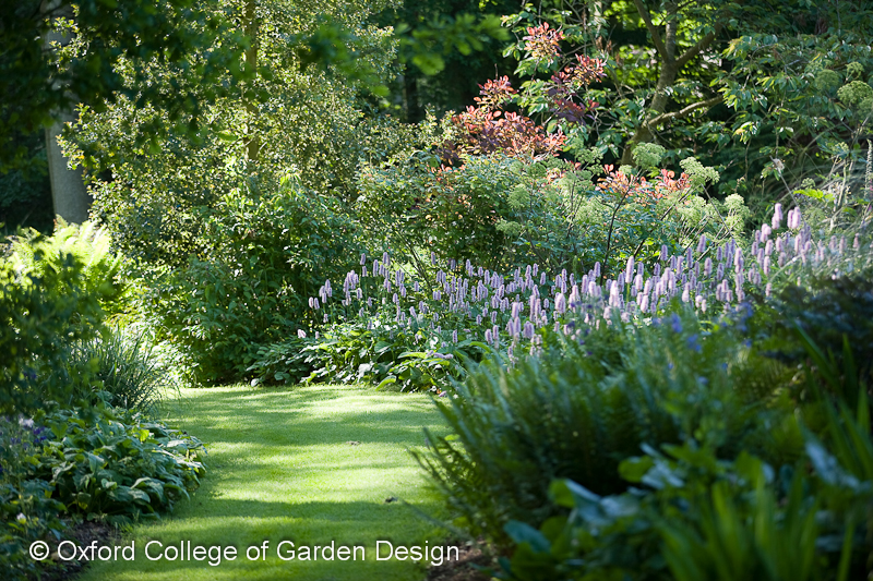 Online Garden Design Courses | Lisa Cox Garden Designs Blog