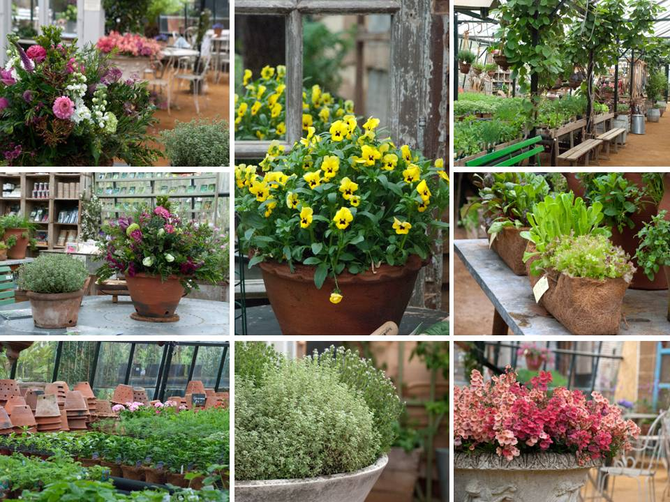 Garden Nurseries TYPAR Garden Centers And Nursuries