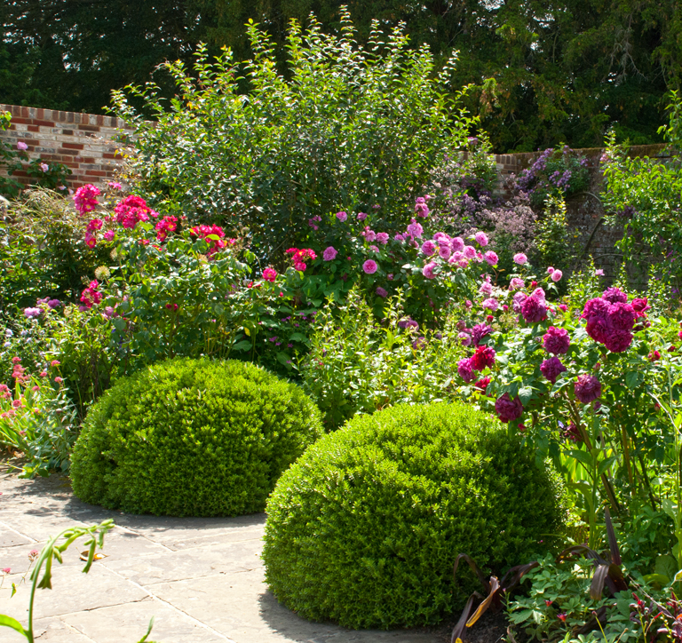 What 39 s in a planting plan lisa cox garden designs blog for Planting schemes for small gardens