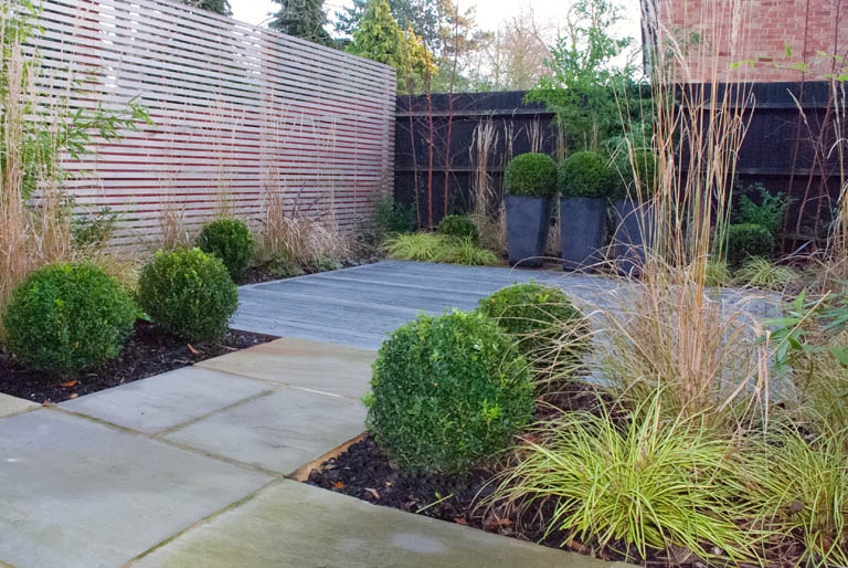 sutton garden design contemporary evergreen planting