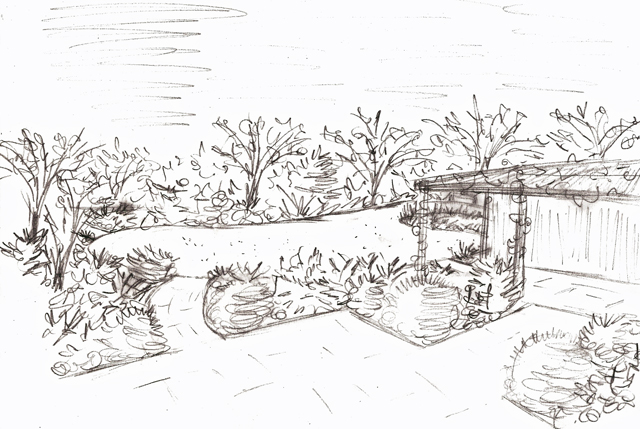 Garden screening lisa cox garden designs blog for Garden design sketches