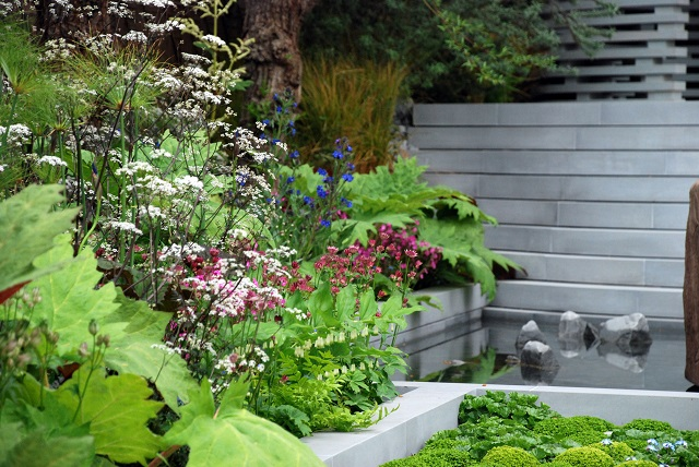 B&Q Sentebale Forget-Me-Not Garden at Chelsea 2013