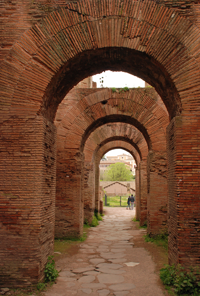 Brick arches in Roman Forum by Lisa Cox