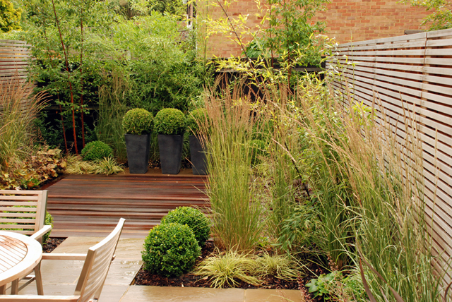 Contemporary garden design for a modern mews house Sutton `