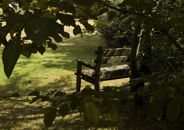 Grandpa's bench by RozSheffield Flickr image
