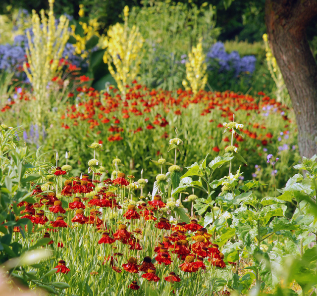 The Flower Garden at Loseley Lisa Cox Designs