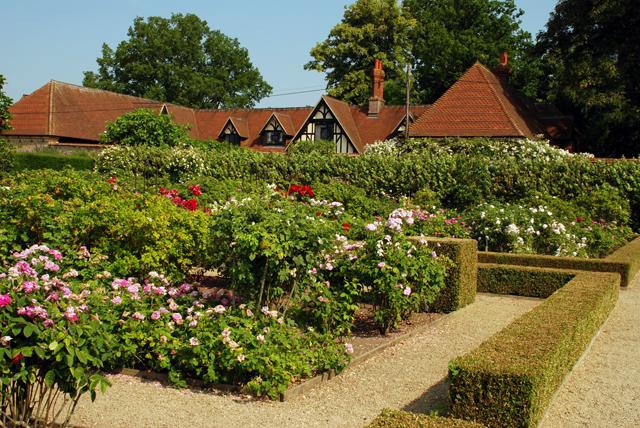 The Rose Garden Loseley Lisa Cox Designs
