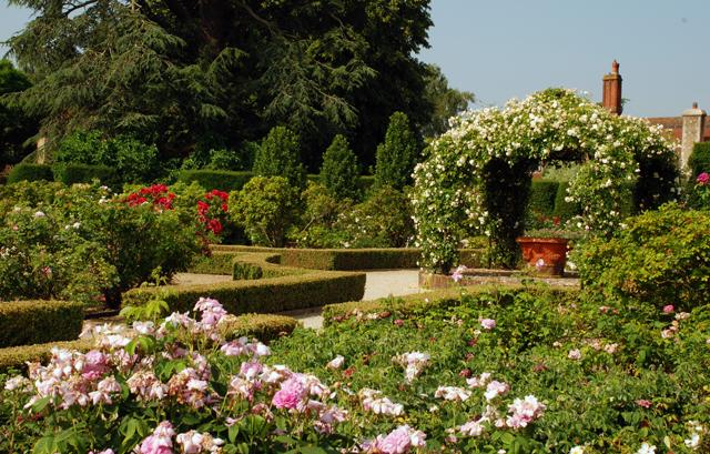 The Rose Garden Loseley Park Lisa Cox Designs