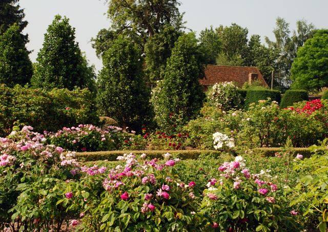 The Rose Garden at Loseley Lisa Cox Designs