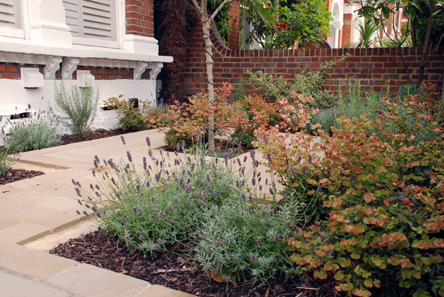 Front garden design London Lisa Cox