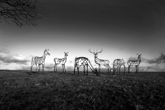 Herd of deer by Andrew Kay Sculpture