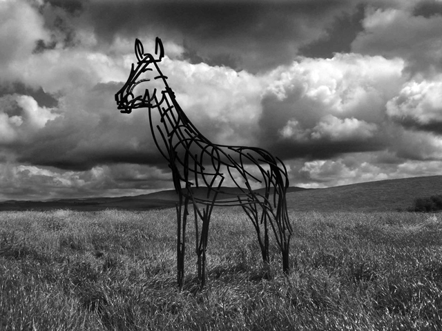 Howgills Stallion sculpture by Andrew Kay