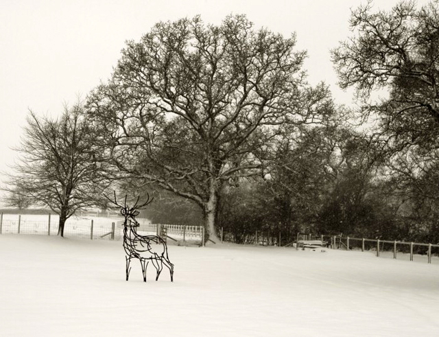 Stag in the snow by Andrew Kay Sculpture