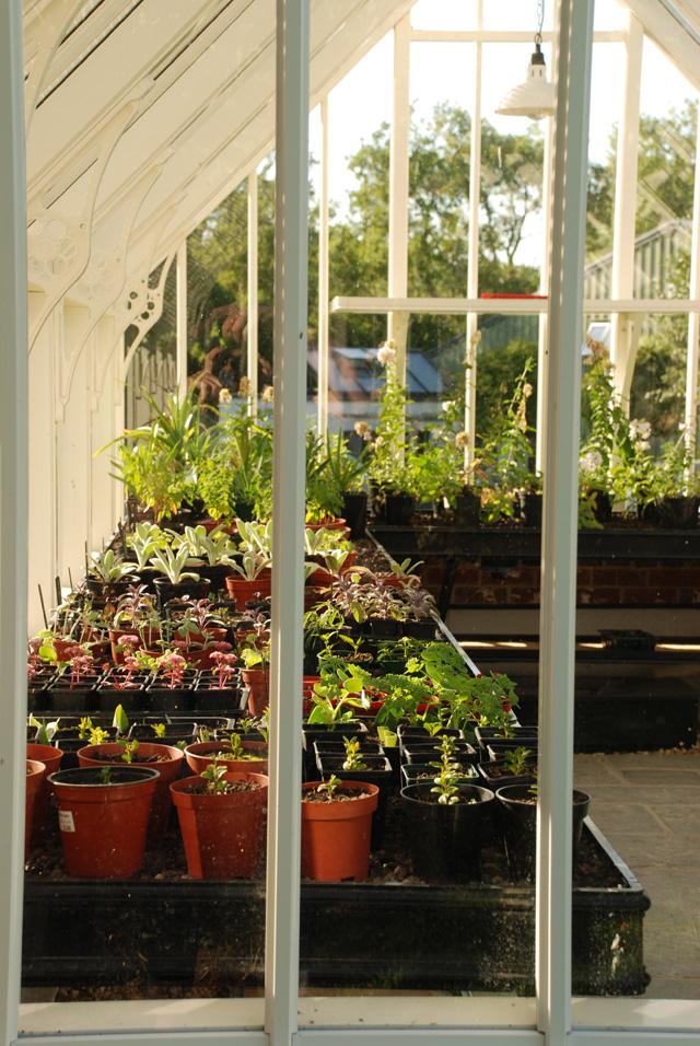 Bespoke greenhouse by Alitex