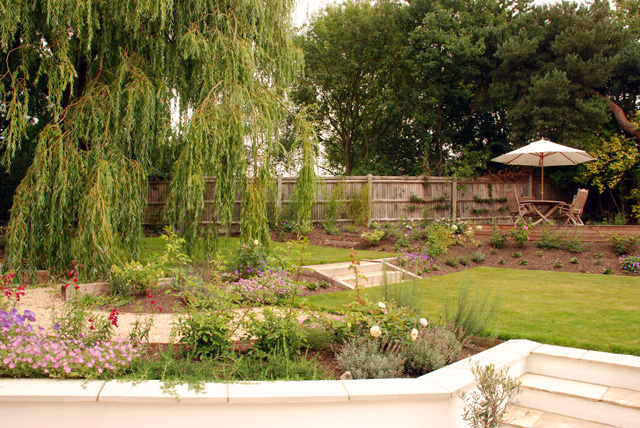 View of deck and willow tree Leatherhead Lisa Cox Garden Designs