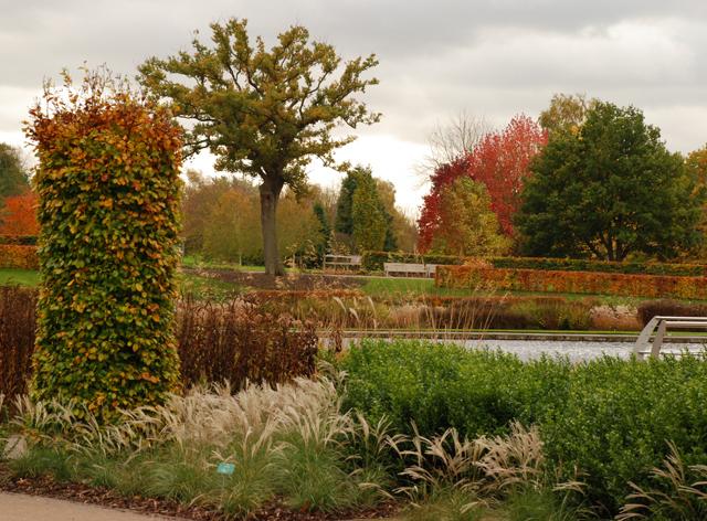 Autumn at Wisley Garden Lisa Cox Designs