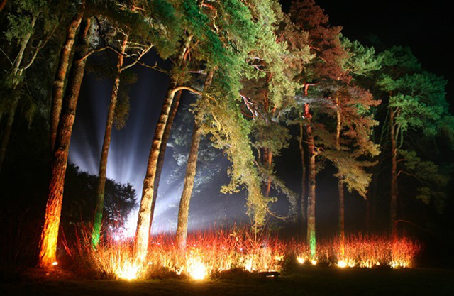 westonbirt illuminated trail The Powerline (Entertainments) Ltd