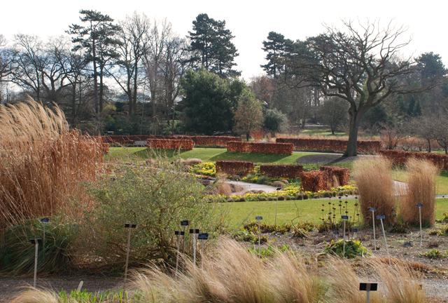RHS Garden Wisley by Lisa Cox