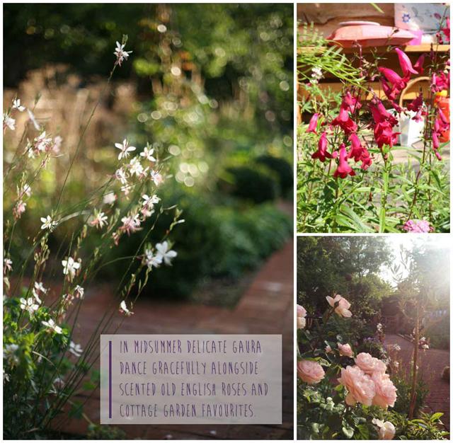 Fiona-Humberstone-English-Garden-Lisa-Cox-Designs-007