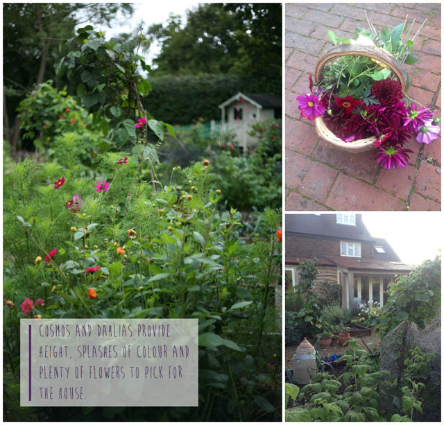 Fiona-Humberstone-English-Garden-Lisa-Cox-Designs_008