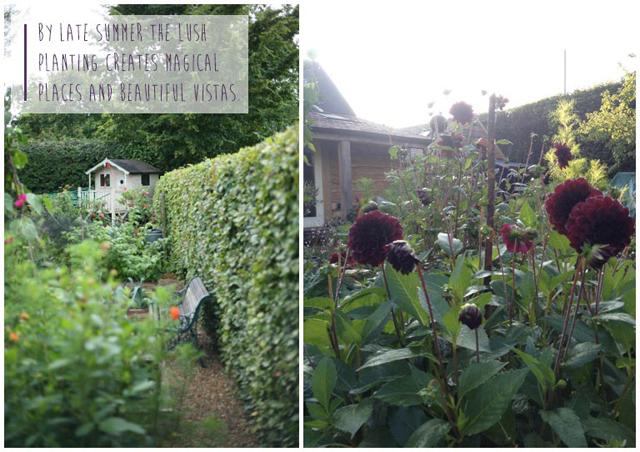 Fiona-Humberstone-English-Garden-Lisa-Cox-Designs_014