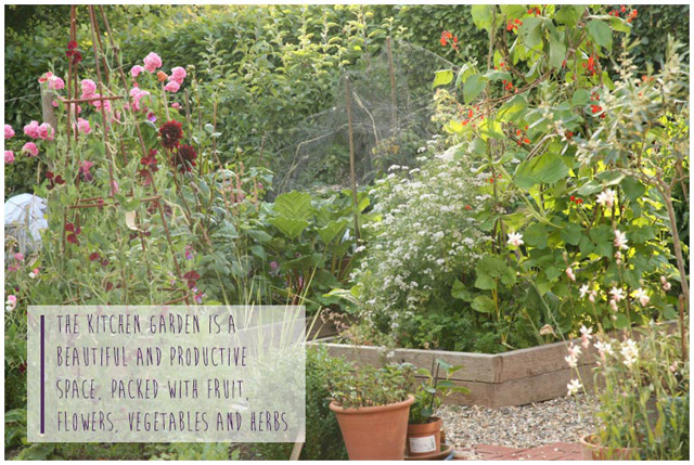 Fiona-Humberstone-English-Garden-Lisa-Cox-Designs_015