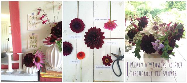 Fiona-Humberstone-English-Garden-Lisa-Cox-Designs_018