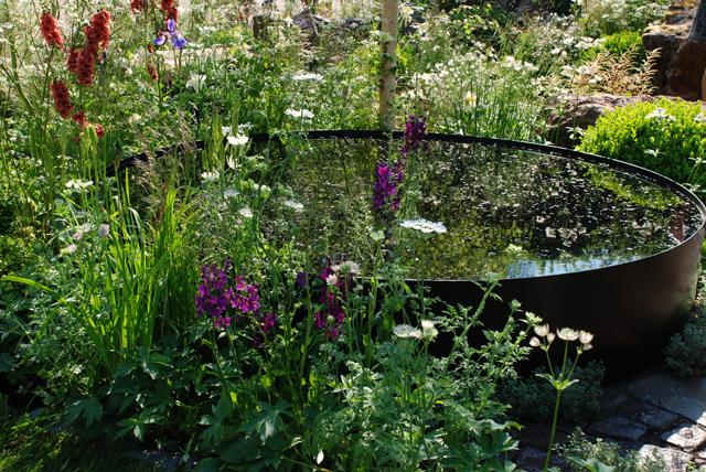 The Night Sky Garden RHS Chelsea Flower Show 2014 Lisa Cox