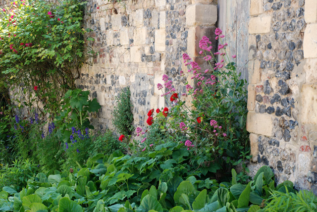 Flint & Stone wall with spring planting Lisa Cox Designs