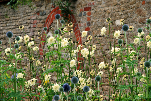 Loseley park garden part 1 from gertrude jekyll to the for Gertrude jekyll garden designs