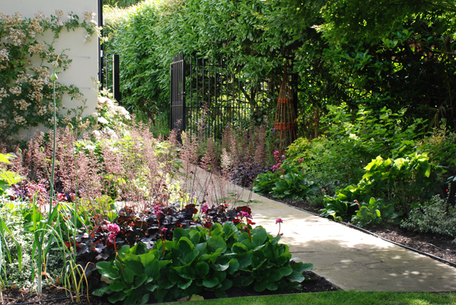Side access in Oxshott Garden Lisa Cox Designs