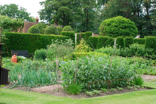 Vegetable garden at Loseley Park Lisa Cox designs