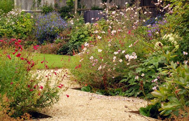 Garden in leatherhead one year on Lisa Cox Designs