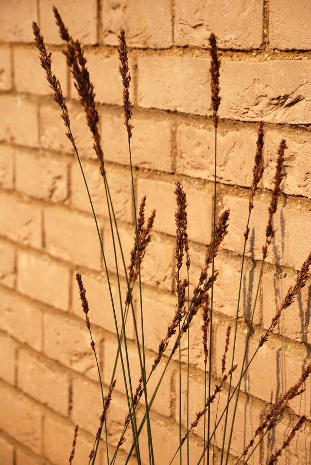 Grasses & brickwork Hauser Wirth Lisa Cox Designs
