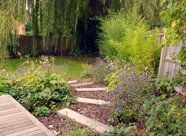 From the drawing board leatherhead garden one year on for Garden design blogs
