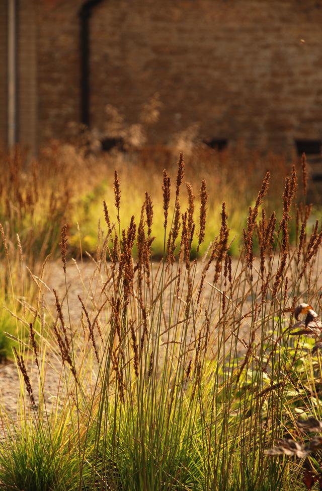 Inner courtyard Hauser Wirth Somerset Lisa Cox Designs