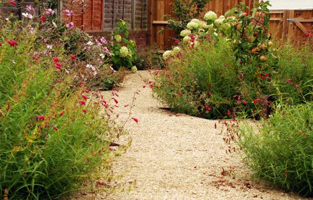 Leatherhead garden 1 year on Lisa Cox Designs