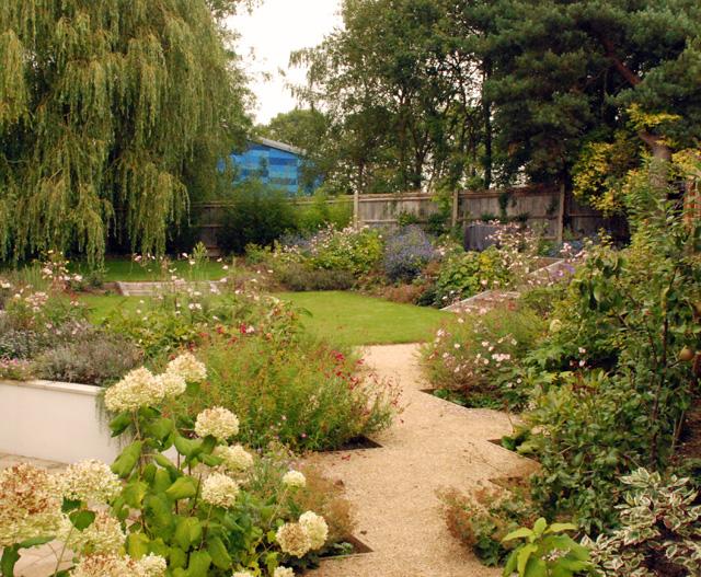One year on Leatherhead garden Lisa Cox Designs