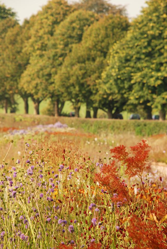 Perennial borders Hauser Wirth Lisa Cox Designs