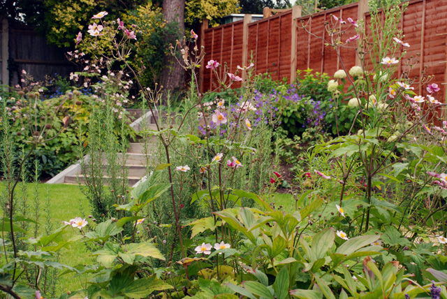 Planting in Leatherhead garden after one year Lisa Cox Designs