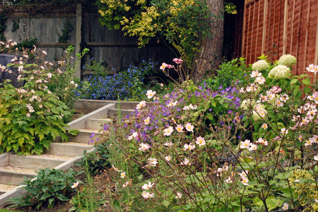 Sleeper steps in Leatherhead garden Lisa Cox Designs