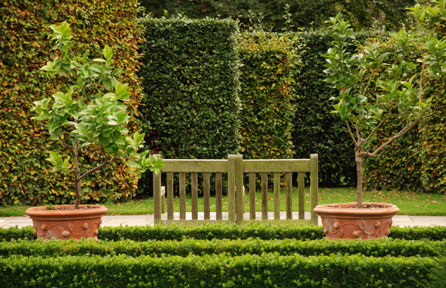 Bench & formal hedging Hotel Villa Augustus Lisa Cox Garden Designs