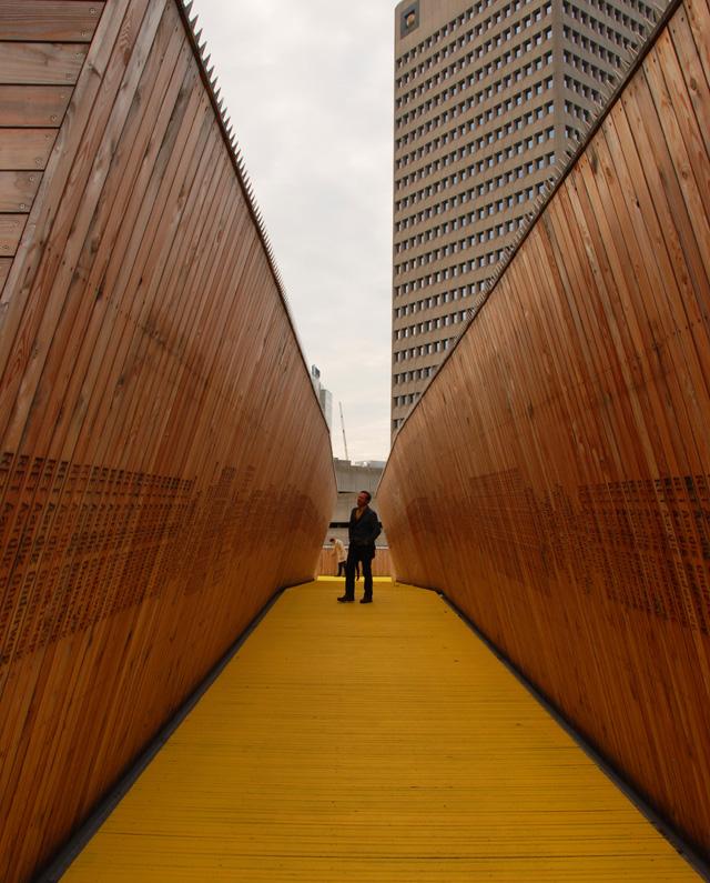 Rotterdam Citizens Crowdfund wooden walkway Lisa Cox Garde Designs
