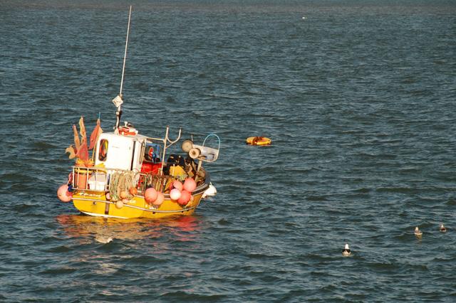 Fishing boat in Lyme Regis Lisa Cox Garden Designs