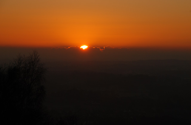Sunrise at Box Hill Lisa Cox Garden Designs