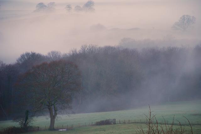 Welsh Hills misty morning Lisa Cox Garden Designs