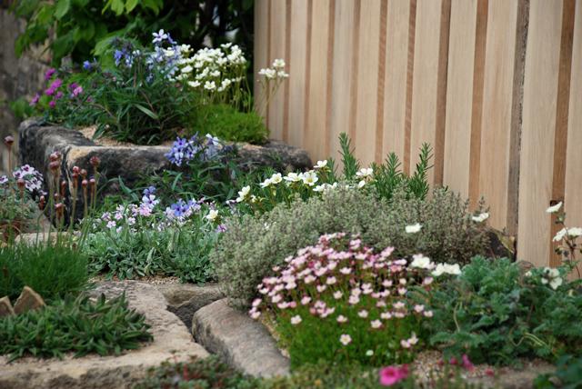 Alpine planting in Cornerstone garden RHS Malvern Lisa Cox